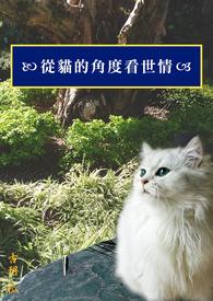 從貓的角度看世情