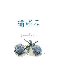 ✜《 Laurustinus 繡球花》:《無色的冠冕》