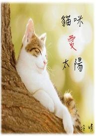 貓咪愛太陽(書封)