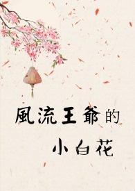 風流王爺的小白花