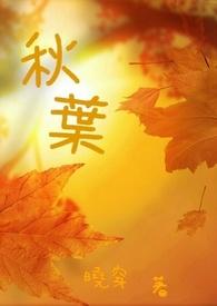 四季系列--秋葉
