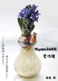 Hyacinth習作簿