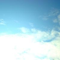 空痕-wing
