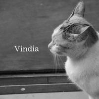 Vindia