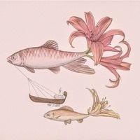 Fish不會流淚