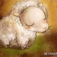 綿羊愛月亮.