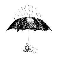 今天下小雨