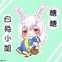 白兔小姐/糖糖