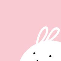 一個兔子洞